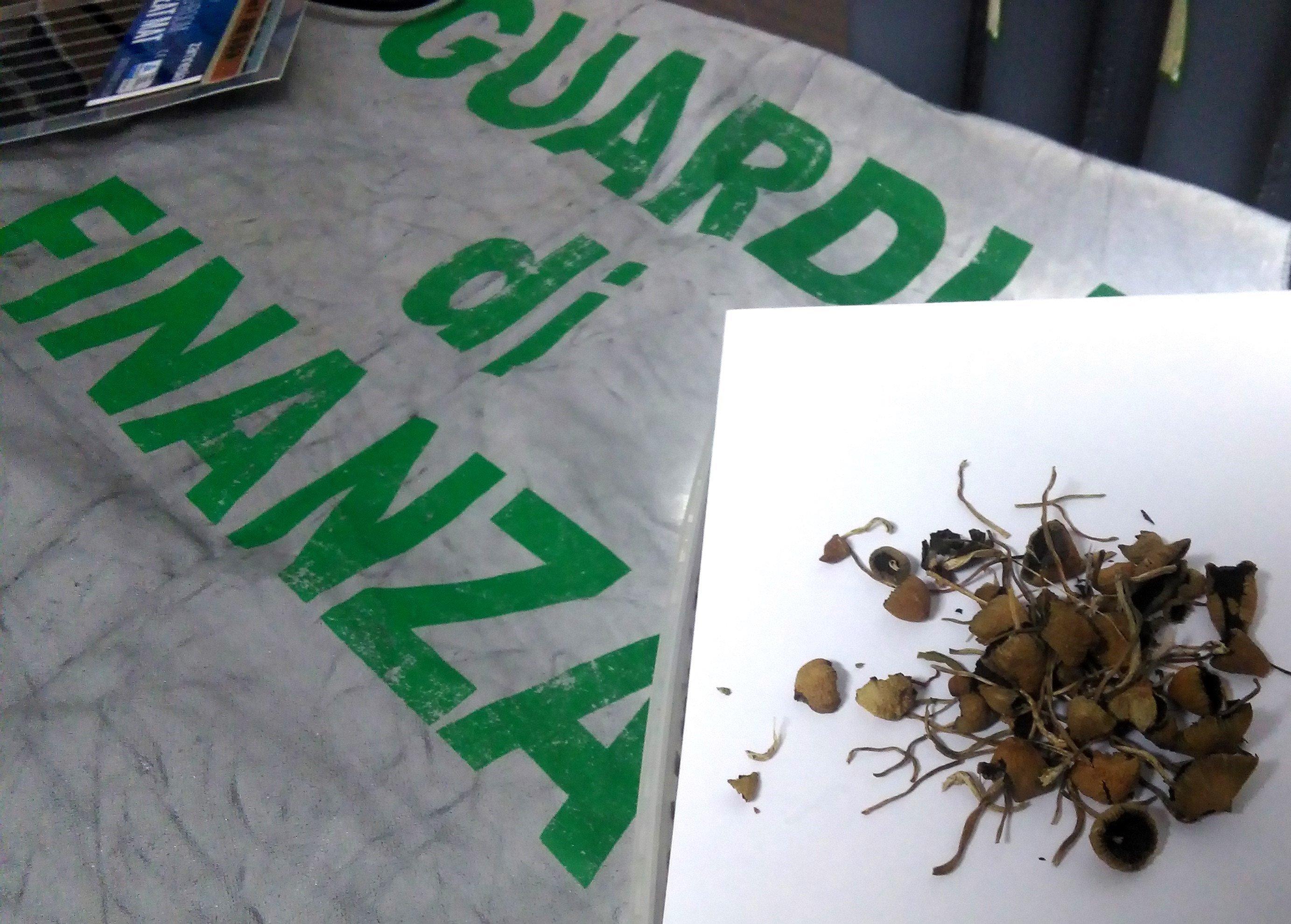 Sequestrato un chilo di funghi allucinogeni, denunciato un 23enne