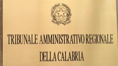 Photo of Tar Calabria, inaugurato l'anno giudiziario: il nodo delle interdittive antimafia