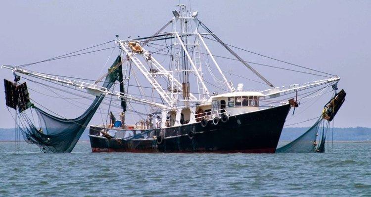 Resti umani tra le reti dei pescatori. A Rocca Imperiale tirati su un cranio e delle ossa