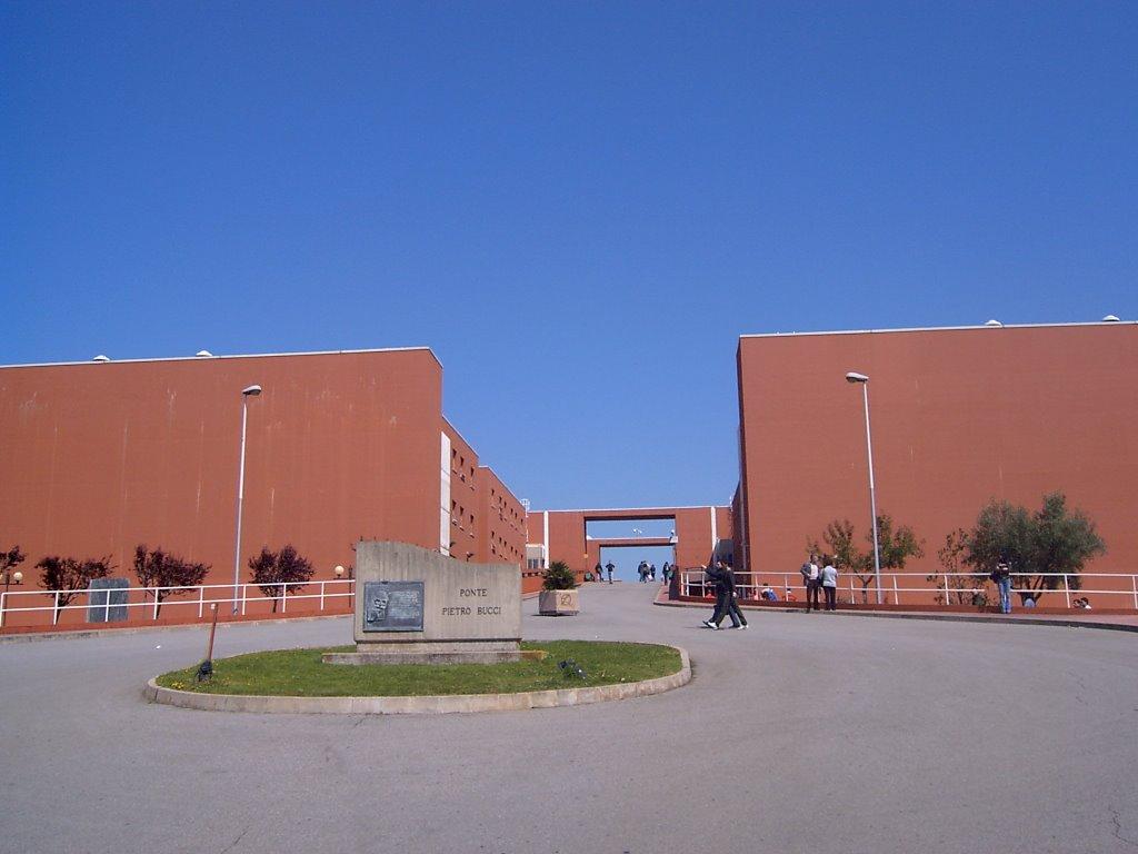 Università della Calabria, Nicola Leone è il nuovo rettore