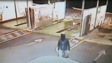 Photo of Tentata rapina a Paola, carabinieri e polizia fermano il presunto autore