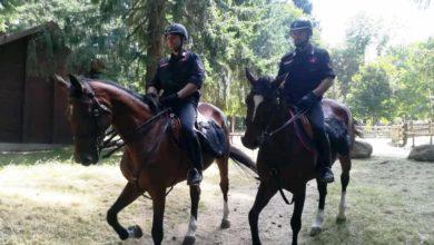 Photo of Carabinieri a cavallo per controllare il territorio: ecco le zone assegnate