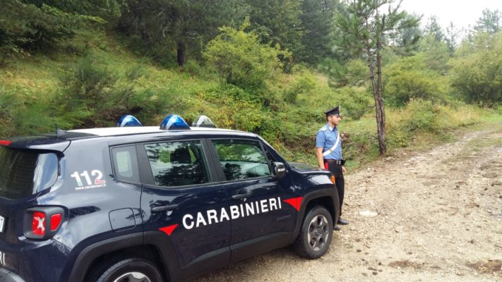 Si perde in Sila mentre raccoglie funghi: i carabinieri lo rintracciano