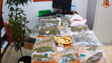 Photo of Cosenza, nel negozio custodiva circa 2 chili di marijuana: denunciato