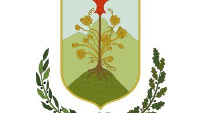 Photo of Casali del Manco ha il suo stemma araldico: vince la proposta C