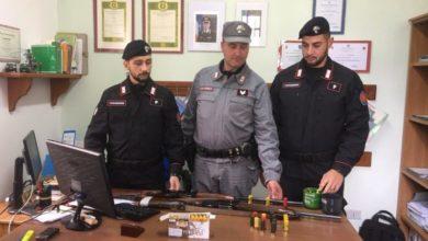 Photo of Trovate armi nel Parco Nazionale della Sila: due denunce