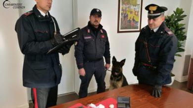 Photo of Spaccio di droga a Montalto, ecco cosa hanno scoperto i carabinieri