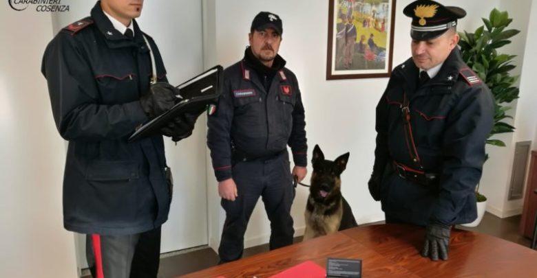 Spaccio di droga a Montalto, ecco cosa hanno scoperto i carabinieri