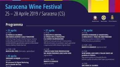 Photo of Saracena Wine Festival, ecco il programma della decima edizione