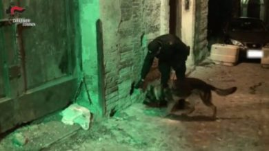 Photo of ALARICO | Spaccio di droga a Cosenza, scena muta degli indagati
