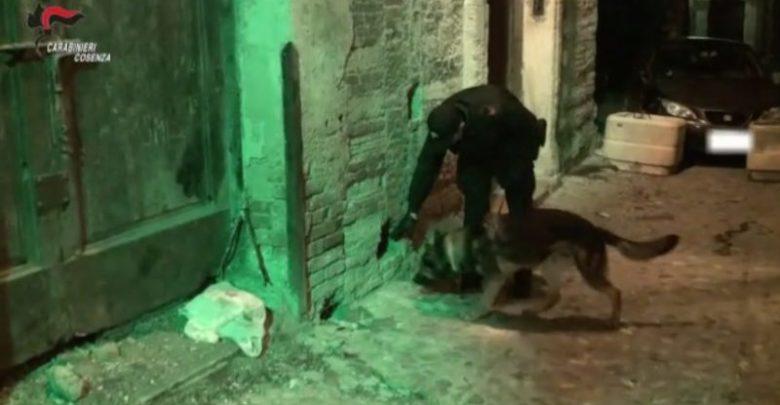 ALARICO | Spaccio di droga a Cosenza, scena muta degli indagati