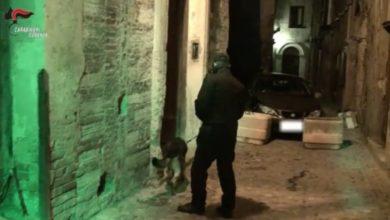 """Photo of Operazione """"Alarico"""", non solo droga: ecco tutte le armi ritrovate"""