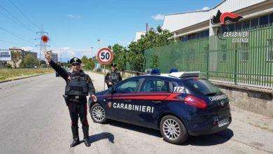 Photo of Cosenza, i controlli dei carabinieri effettuati tra il 25 aprile e 1 maggio