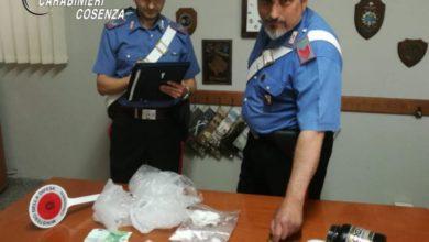 Photo of Santa Maria del Cedro, arrestata giovane coppia di spacciatori