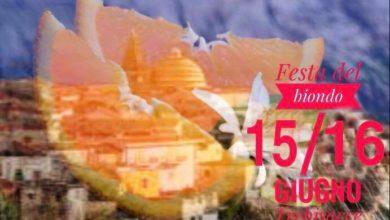 Photo of Trebisacce, il 15 e 16 giugno si celebra il biondo tardivo