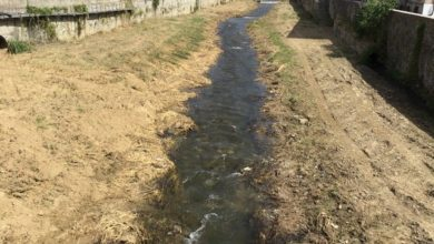 Photo of La Lipu: «A Cosenza la pulizia meccanica del Crati distrugge l'ecosistema»