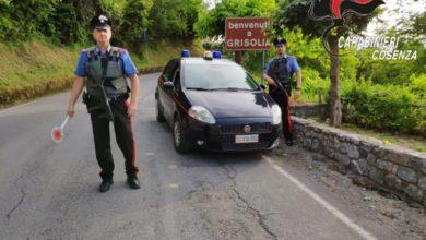 Photo of Tentato omicidio a Grisolia, fermato un pregiudicato