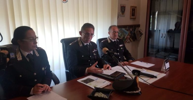 Incendi boschivi zone individuate carabinieri forestali