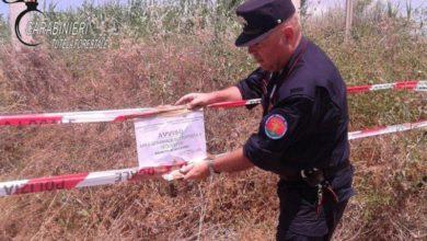 Photo of Grisolia: abbandono rifiuti, sequestrata area e denunciato autore