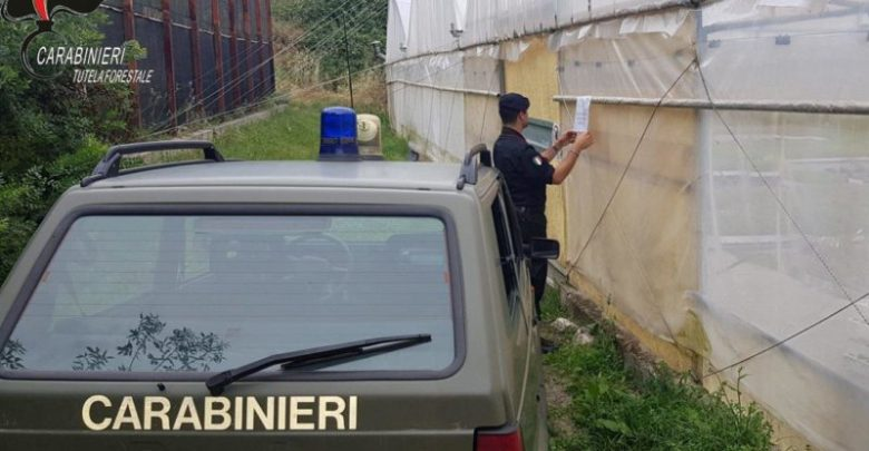 sequestro agrumeto due serre carabinieri forestale