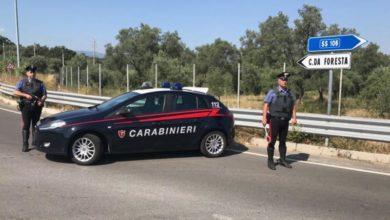 furto agrumi origliano rossano arresto carabinieri