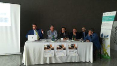 Photo of A Grisolia il workshop sul Diritto societario, civilistico, fiscale e tributario per il settore agricolo
