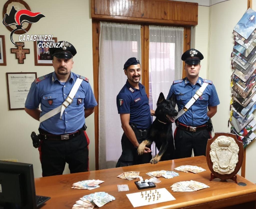 Spaccio di droga nell'Alto Tirreno cosentino, arrestate due persone