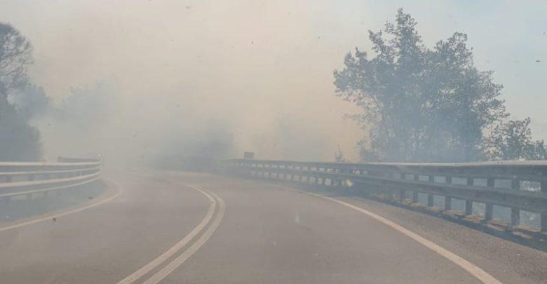 Grosso incendio sulla Silana-Crotonese di fronte il Castello Svevo di Cosenza