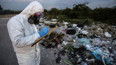 Ecomafia, la Calabria ai primi posti per crimini ambientali