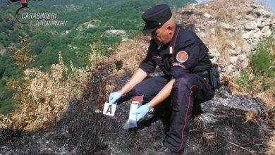 Photo of Aiello Calabro, accendono una lanterna per la Madonna e causano un incendio