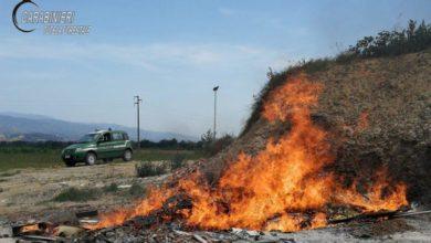 Torano Castello: combustione illecita di rifiuti, una denuncia