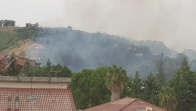 Photo of Castrolibero, incendio vicino alle abitazioni. Ecco dove sono le fiamme