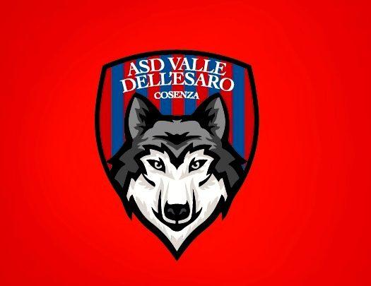 Nuova realtà calcio giovanile provincia Cosenza ecco dove si trova