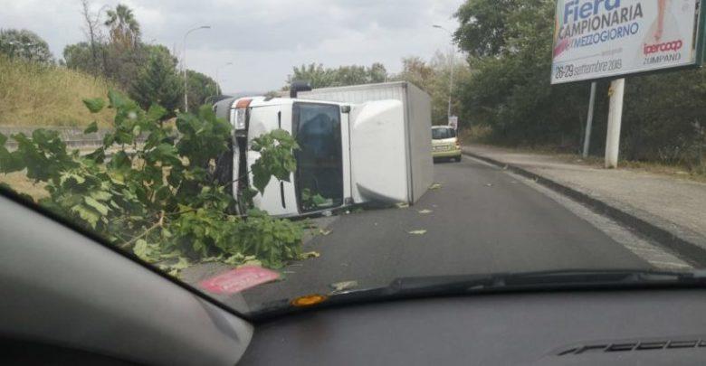 Photo of Cosenza, camion si ribalta su viale Magna Grecia e travolge un albero
