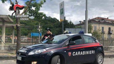 Photo of Cosenza, rubano 120 litri di gasolio: arrestate due persone