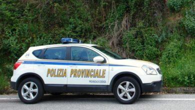 Photo of Blitz antibracconaggio della Polizia Provinciale in Sila: tre denunce