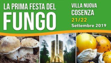 Photo of Prima edizione della Festa del fungo sabato 21 e domenica 22 settembre nella Villa nuova