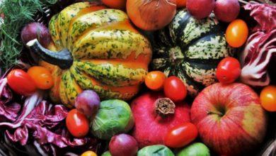 Photo of Alimentazione ed influenza, la prevenzione comincia a tavola