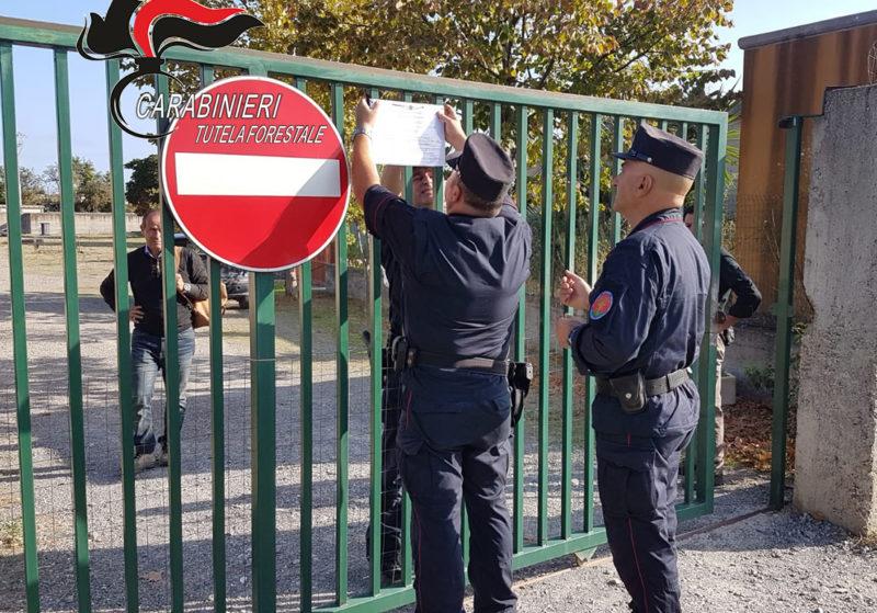 Canile di Corigliano Rossano sequestrato dai carabinieri forestale. Nove indagati.jpg
