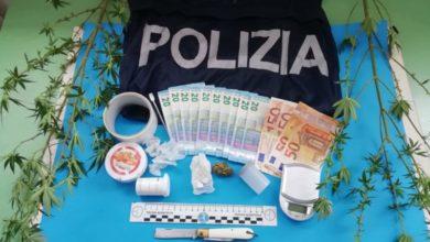 Photo of Due piante di marijuana nella vasca da bagno: un arresto a Paola