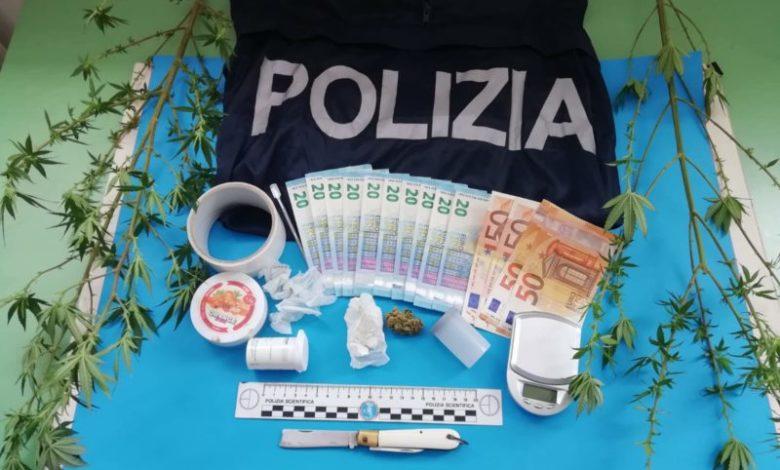 Due piante di marijuana nella vasca da bagno: un arresto a Paola