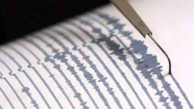 Ingv monitora la Calabria, 12 terremoti negli ultimi tre giorni