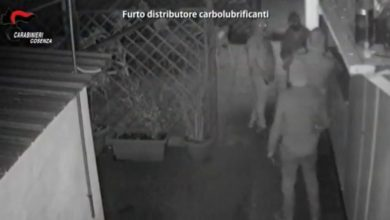 Photo of Rapine e furti a Cosenza, scattano gli arresti: in manette 19 persone