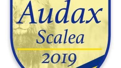 """Photo of Audax Scalea, la soddisfazione di Minniti: """"Progetto appena iniziato"""""""