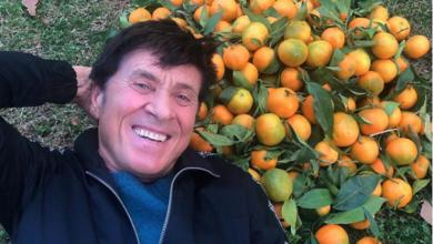 Photo of Clementine con foglia di Corigliano Rossano a casa di Gianni Morandi