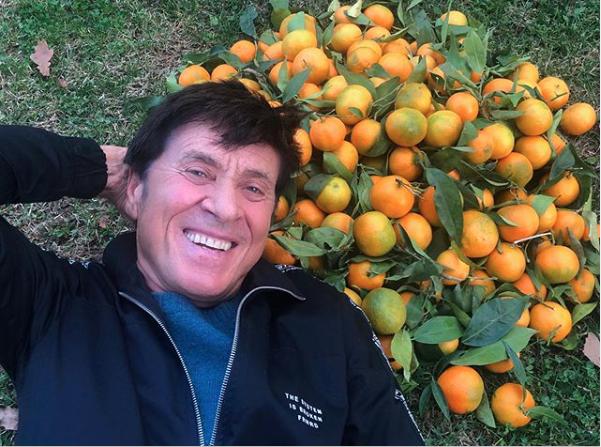 Clementine con foglia di Corigliano Rossano a casa di Gianni Morandi