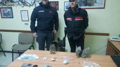 Photo of Controlli antidroga nell'Alto Tirreno cosentino, due arresti