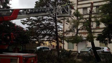 Photo of Maltempo in Calabria, lieve miglioramento a partire da domani
