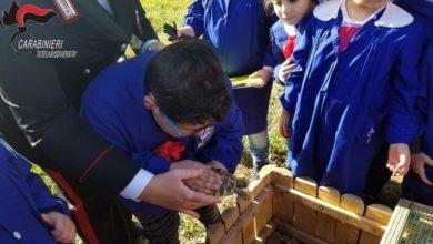 Photo of La Tartaruga… ritorna a scuola: le foto della seconda edizione