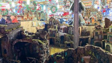 Photo of Cosenza, al via i Mercatini di Natale a piazza Bilotti